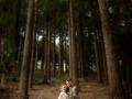 Dark Forest-7