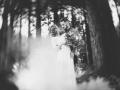 Dark Forest-63